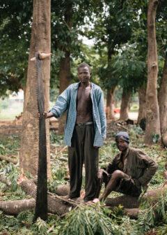 Woodcutter, Lilongwe